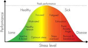 Stress and relaxation - Takotsubo